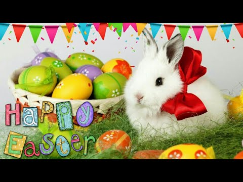 Happy easter wishesgreetingsimagessmsquotes sayings easter happy easter wishesgreetingsimagessmsquotes sayings easter special whatsapp status video m4hsunfo
