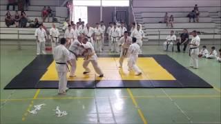 karate kyokushin 20 man kumite antofagasta chile