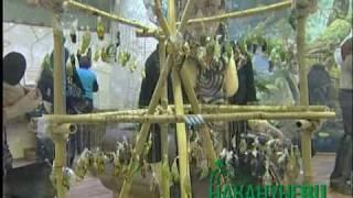 Парк бабочек(В Екатеринбурге открылся парк живых бабочек. Насекомые свободно передвигаются и бесстрашно садятся на..., 2010-02-13T14:01:00.000Z)