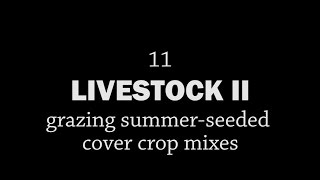 Rotationally Raised - Livestock II: Grazing Summer-seeded Cover Crop Mixes