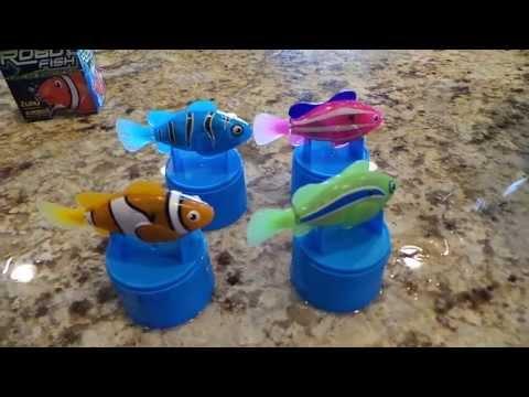 Robo turtle by robo fish zuru funnycat tv for Robo fish tank