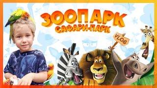 VLOG: Идем в зоопарк. В поисках героев из мультика Мадагаскар. Смешные животные.