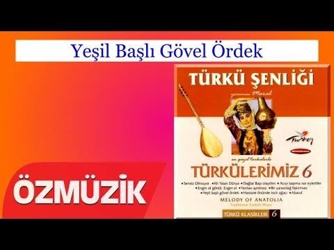 Yeşil Başlı Gövel Ördek - Türkü...