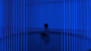 12 Steve Hauschildt - Liberty I [Editions Mego]