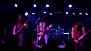 Sanity Assassin (Live at November to Dismember Metal Fest, Bucharest, Romania, 29.11.2014)