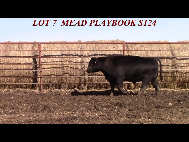 Mead Farms Lot 7