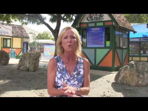 The Resort at Schlitterbahn New Braunfels: A First Timer's Guide