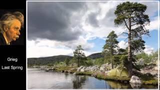 Grieg : 2 Elegiac Melodies Op.34 -  GSO/Jarvi*
