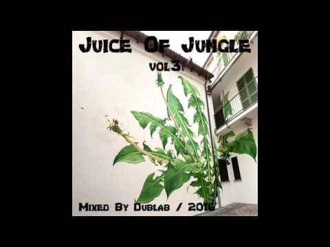 RaggaJungle Dnb Mix 2016 - Juice Of Jungle Vol3 By Dublab