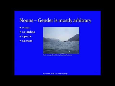 Jump Start Brazilian Portuguese -- Lesson 8 -- Gender, Number, and Agreement