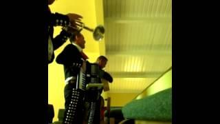 Madre es Ternura -Mariachi Latino