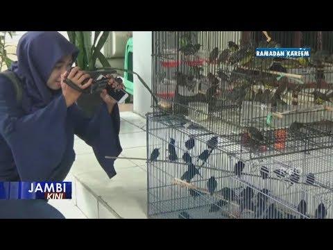 Jual Ratusan Burung Dilindungi, Pemilik Usaha Jadi Tersangka