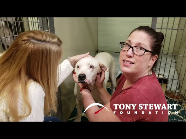 Tony Stewart Foundation Grant Partner: The Hamilton County Humane Society