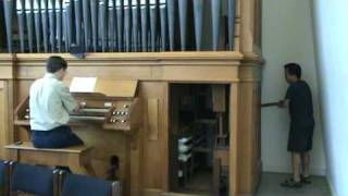 Hand-pumped Pipe Organ