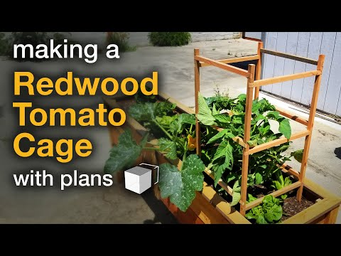 DIY Redwood Tomato Cage - with plans