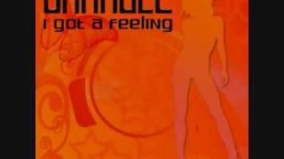 07 - Orangez i got a feeling (b tastic remix edit)