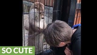 Otter gives kid relaxing scalp massage