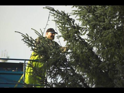 Municipal Versus Home Christmas Light Strings.