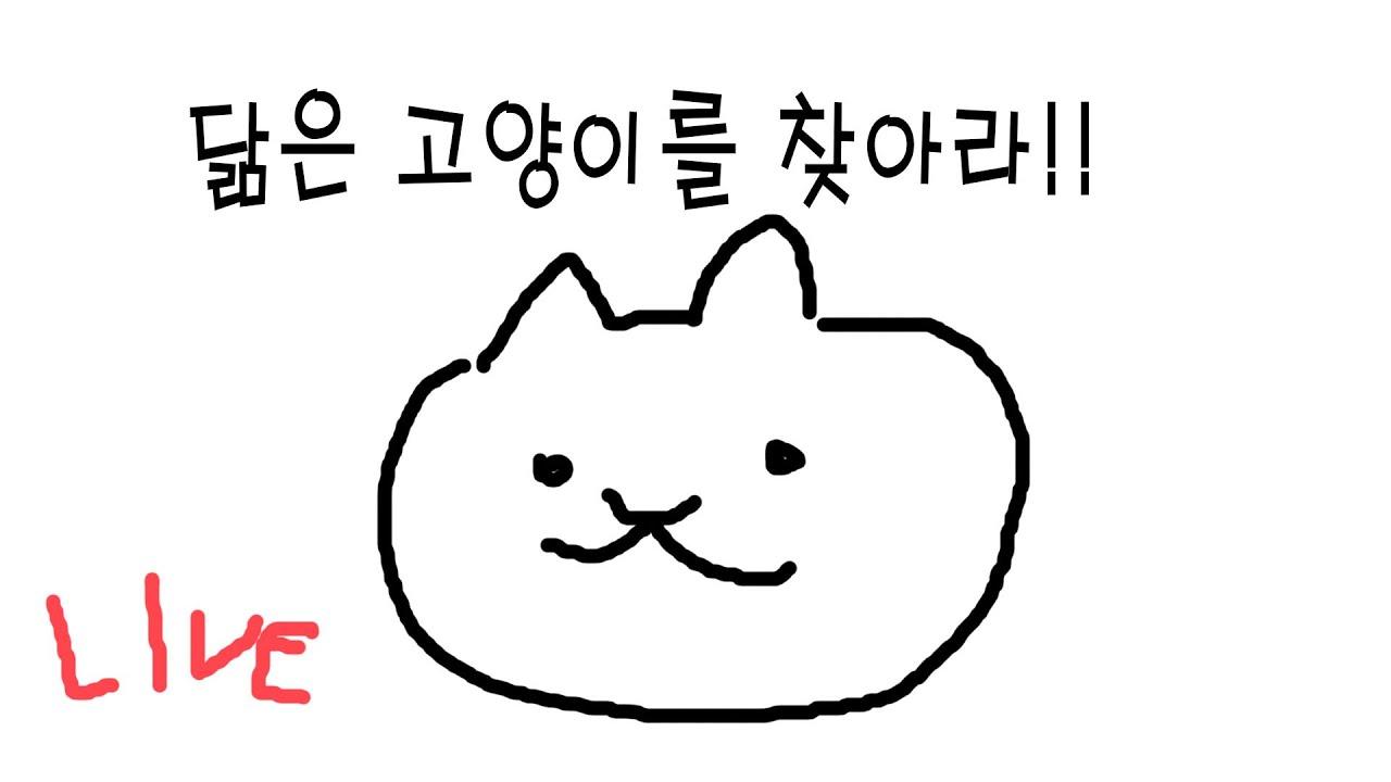[다시보기] 닮은 고양이 찾기 대회