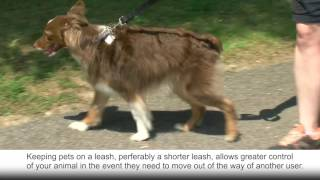 City of Raleigh's Greenways: KEEPING PETS ON A LEASH WHEN WALKING ON A TRAIL