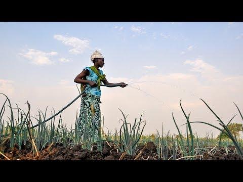 Global Food Assistance Outlook Brief (July 2017)