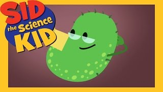 Sid the Science Kid: The Journey of a Germ thumbnail