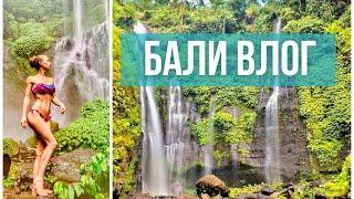 Влоги прошлой жизни. Бали 2019, водопад Sekumpul, утренняя зарядка, фитнес-тур
