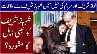 Maryam Nawaz & Nawaz Sharif New Plan for Shahbaz Sharif | Neo News