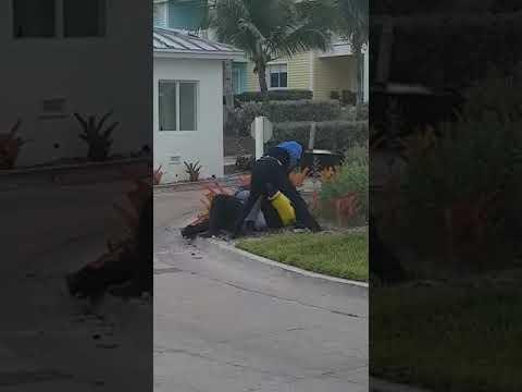 Bimini bay security fight