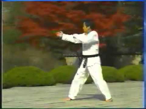taekwondo poomse 9 koryo