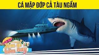 10 Sự Thật Bất Ngờ Về Cá Mập Khổng Lồ MEGALODON