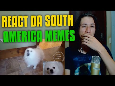 React Banda Djavu em cachorrês (South America Memes)