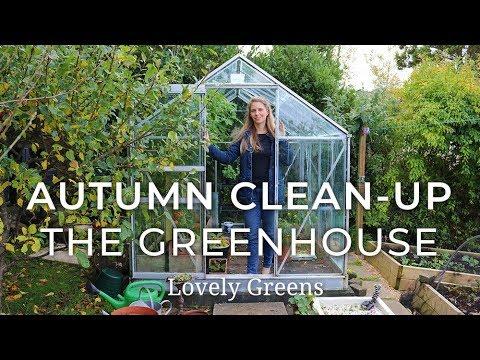 Autumn Garden Clean-up: the Greenhouse