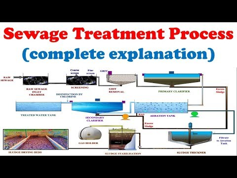 Sewage Treatment Plant Working With Explanation | Wastewater Treatment Process Description