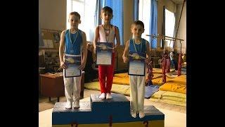 Спортивная гимнастика. Третий взрослый разряд.