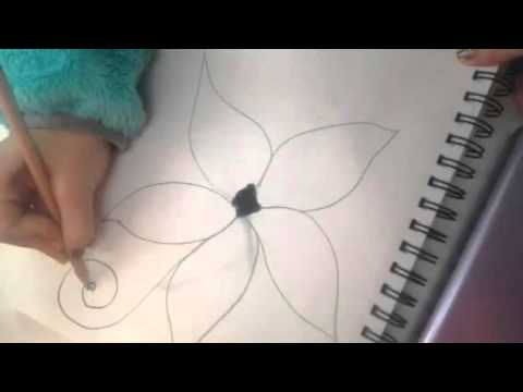 How To Draw A Tropical Hawaiian Flower