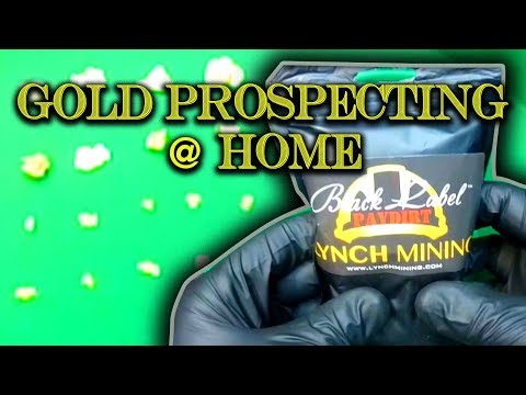 Gold Prospecting at Home #4 - Lynch Mining - Black Label Paydirt (Part 2)