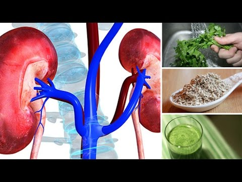 Thumbnail: 7 Best Herbs for Kidney Cleansing