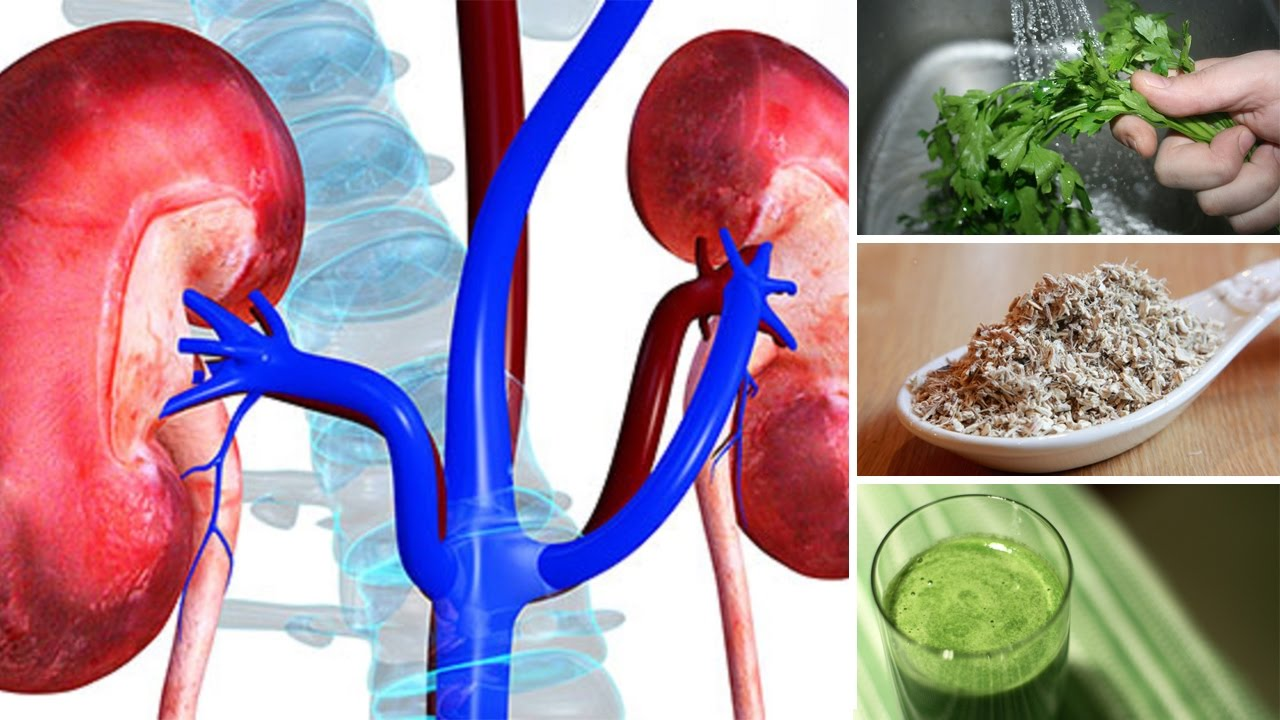 7 Best Herbs For Kidney Cleansing Youtube