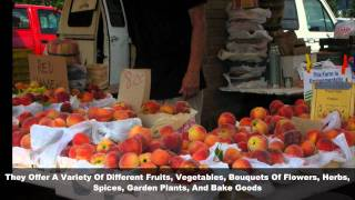 Holland Michigan's OFFICAL Farmers Market