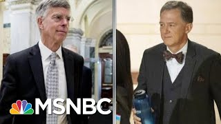 Key Feature Of Trump Impeachment Witness Testimony: Expertise | Rachel Maddow | MSNBC