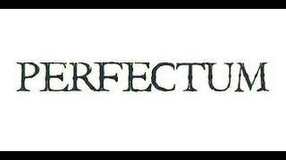 PERFECTUM - Головоломка ( Indie Horror )<