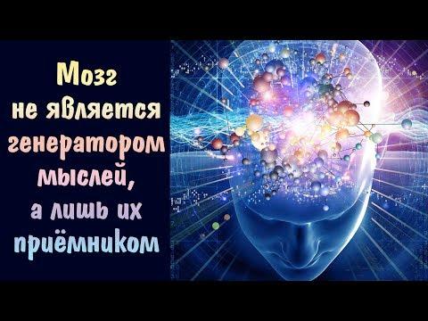 Мозг не является генератором мыслей, а лишь их приёмником | Биороботы | Матрица
