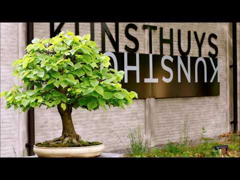 Foto reportage John Veneman bij Kunsthuys Best