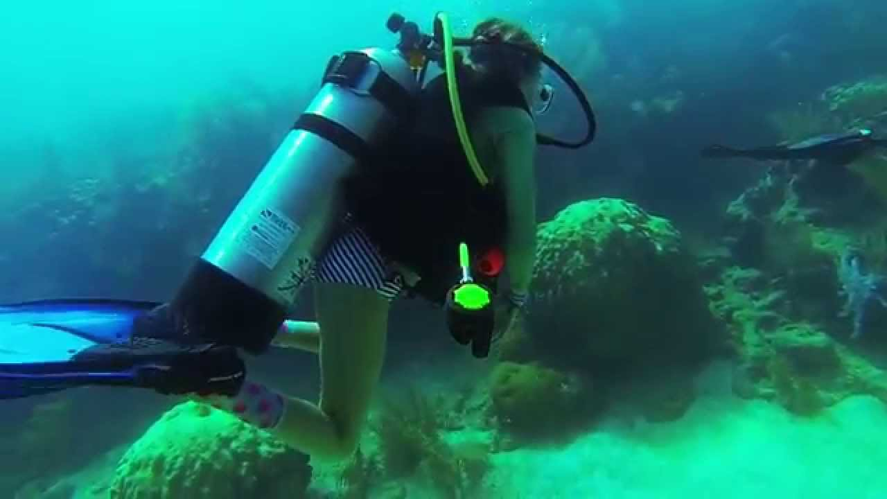 Scuba Diving In Big Pine Reef Florida Keys USA With Roxy
