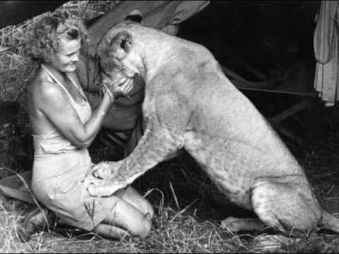 Tribute to George and Joy Adamson, Elsa the Lioness and Born Free!