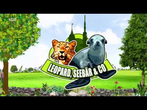 Leopard, Seebär & Co. - Staffel 4 - Komplett