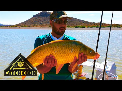 Ep 2 of 2 - Light tackle boat fishing championship - carp catch cook - Gariep Dam, South Africa