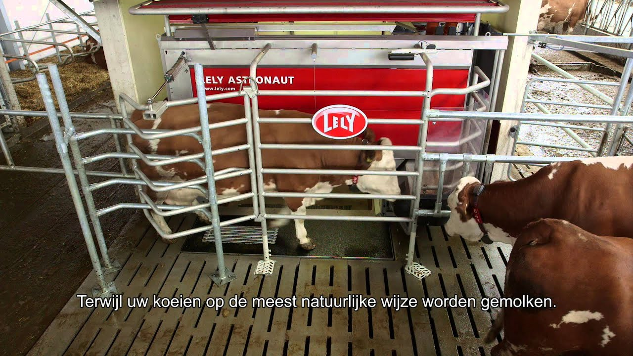 Lely Astronaut A4 - General (Dutch)