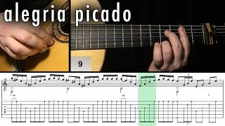 Flamenco Guitar 102 - 29 Alegria Picado